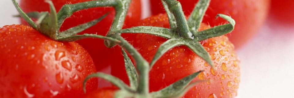 de la filière Fruits et Légumes